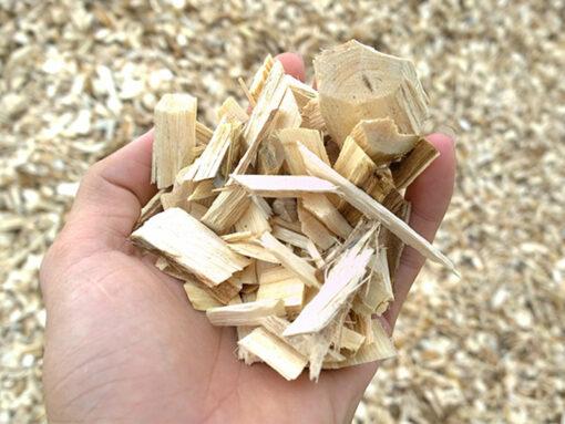 Dăm gỗ xuất khẩu